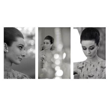 Audrey Hepburn Triptych, 1964 - portraits by Angela Williams